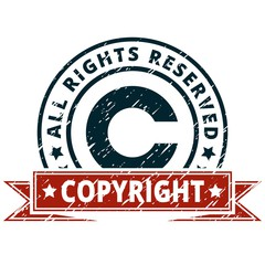 Copyright Infringement Lawsuit